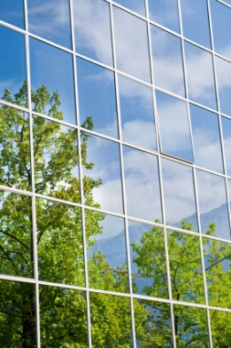 windows with a reflection of blue sky and green trees